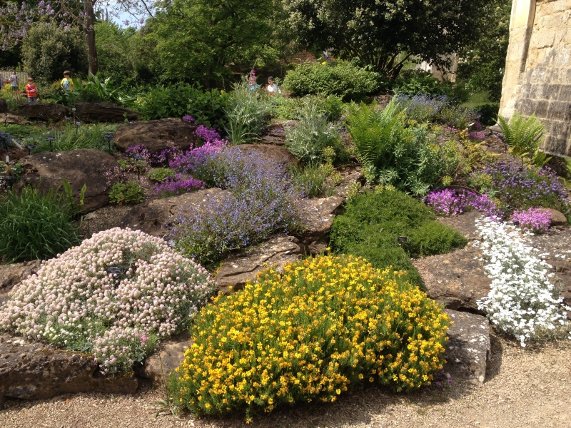 A Lovely Rock Garden