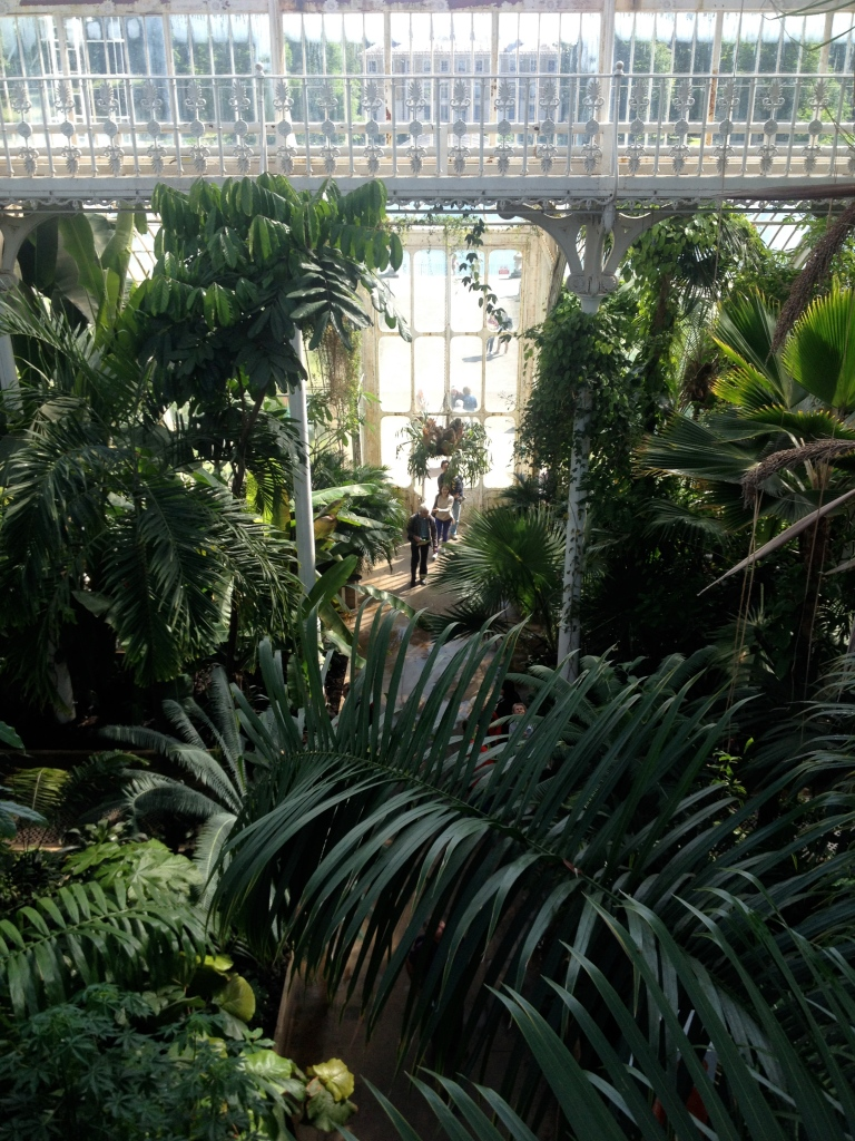Inside the Palm House is a staircase which allows guests to view the conservatory on two levels.