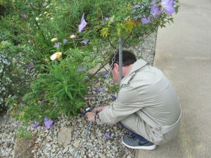 Nick was enthusiastic to find previously unknown plants and associated labels!