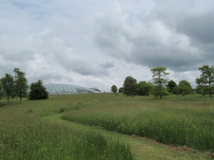 The world's largest single-span glasshouse. Seen from afar.