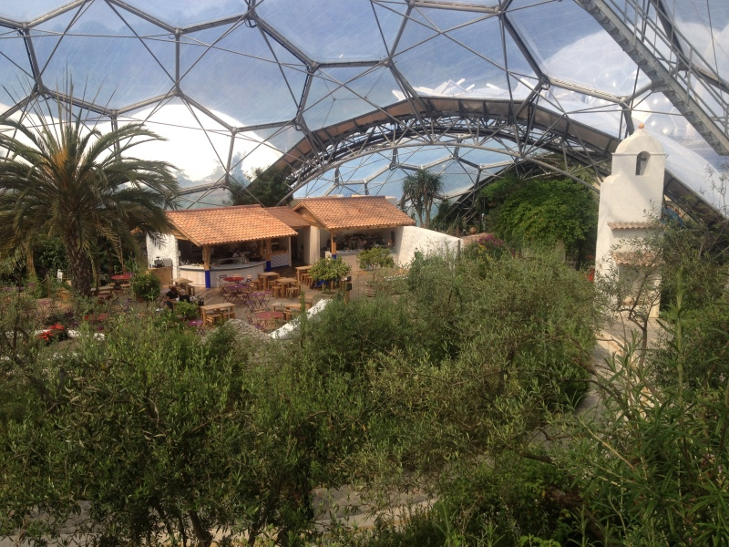 The Mediterranean biome.
