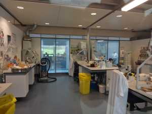 One of the labs inside the seed bank