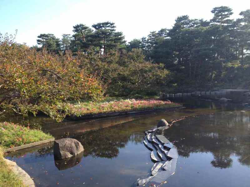 Umekoji Park. We came a too early to Kyoto to appreciate autumn color.