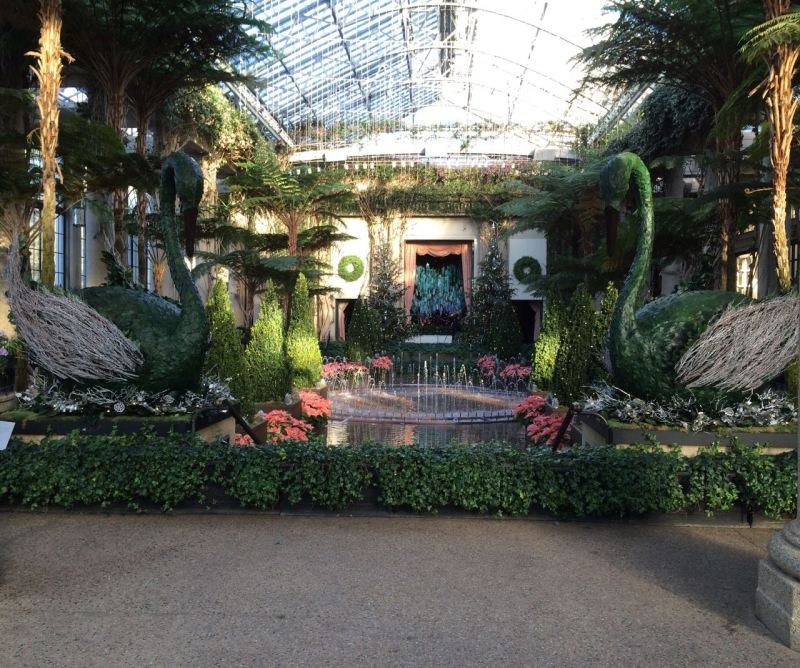 The exhibition display area in the main conservatory.
