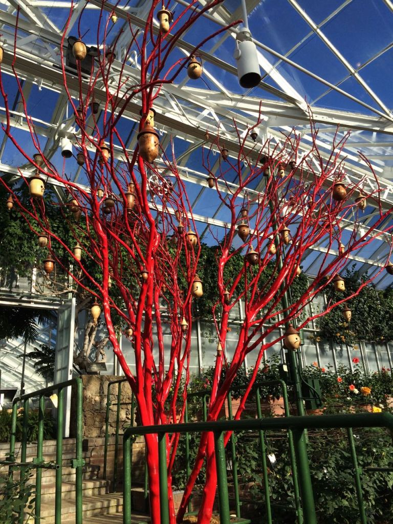 A Lagerstroemia tree painted red and adorned with birdhouses. Located in the Rosehouse.