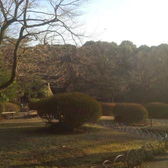 Meji Jingu Garden