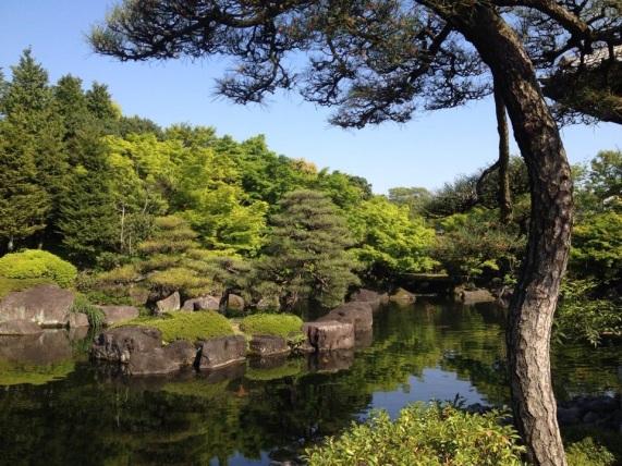 Koi pond and garden at Kok-en