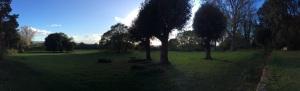 Hidcotes' Pasture Land