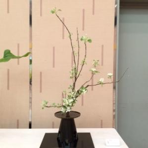 11a - ikebana (9)