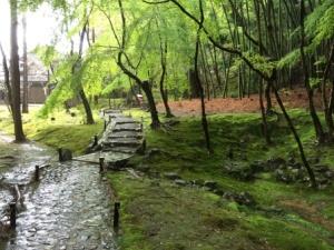 12a - Saiho-ji (14)