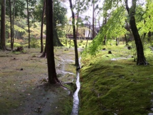 12a - Saiho-ji (15)