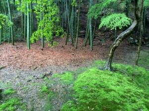 12a - Saiho-ji (16)