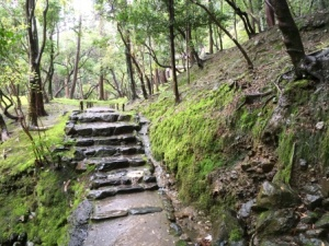 12a - Saiho-ji (25)