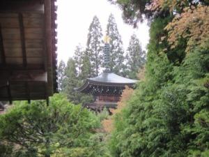 12a - Saiho-ji (45)