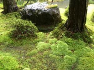 12a - Saiho-ji (5)