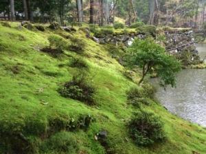 12a - Saiho-ji (7)