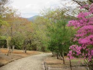 3 - Kameyama Park (1)