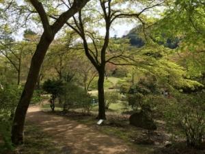 3 - Kameyama Park (10)