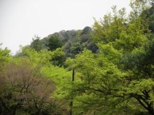 3 - Kameyama Park (2)