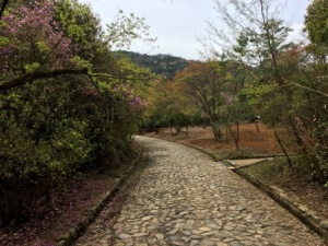 3 - Kameyama Park (3)