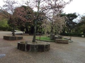 3 - Marayama Park (1)