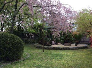 3 - Marayama Park (10)