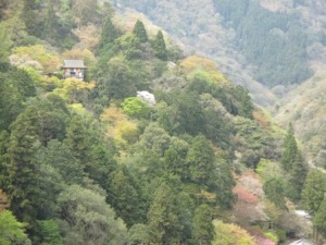 3a - Kameyama Park (4)