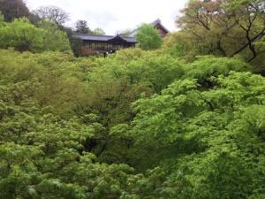 8 - Tofukuji (2)