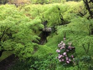8 - Tofukuji (4)
