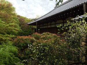 8 - Tofukuji (6)