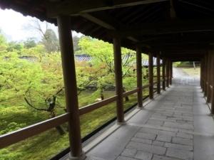 8 - Tofukuji (9)