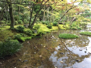 Moss, a silky green vail spread softly on the landscape, provides the quintessential tranquility one associates with Japan. And of course a mirror like stream of water set's the mood. You would hardly think this garden, hardly two acres, sits between three busy roads in the middle of Kyoto!