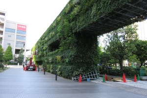 The Umeda Building is also home to this enormous green wall/vertical garden. Utilizing a planting bed below and tiers of vertical containers, this wall consists of annuals, perennials, vines, and woody plants, providing year long interest.