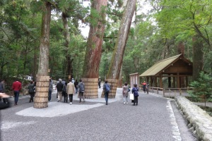 At the most visited shrine in Japan in Ise, these massive Cryptomeria are given bamboo skirts to protect their bark from loving hands.