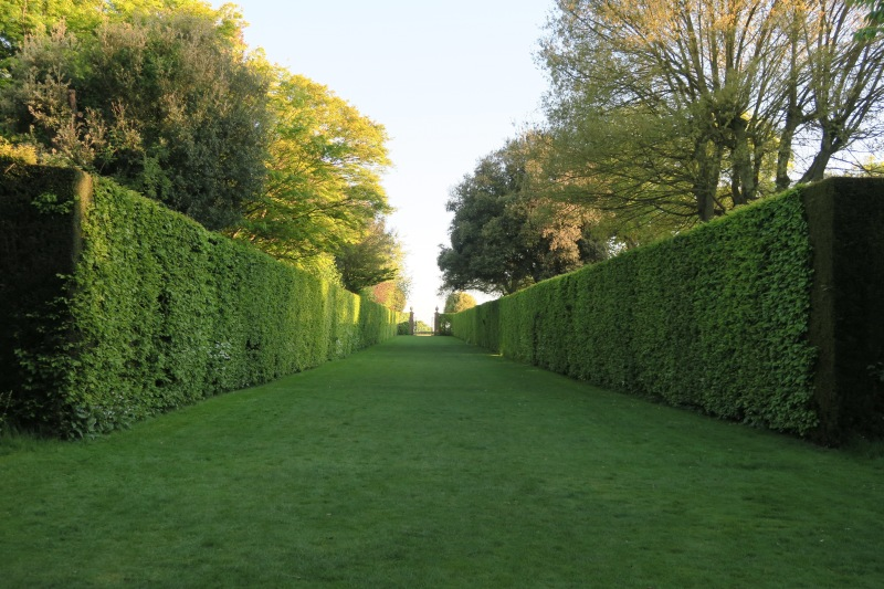 The Long Walk at Hidcote where people stroll to the gates frequently, much to the dismay of people seeking that perfect shot down the center